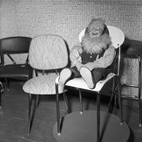 Dukke sitter på stol/Doll sitting on a chair